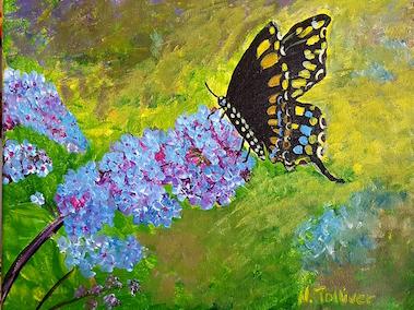 butterfly-bush